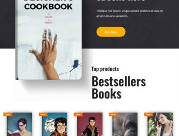 eBook Free WordPress Theme