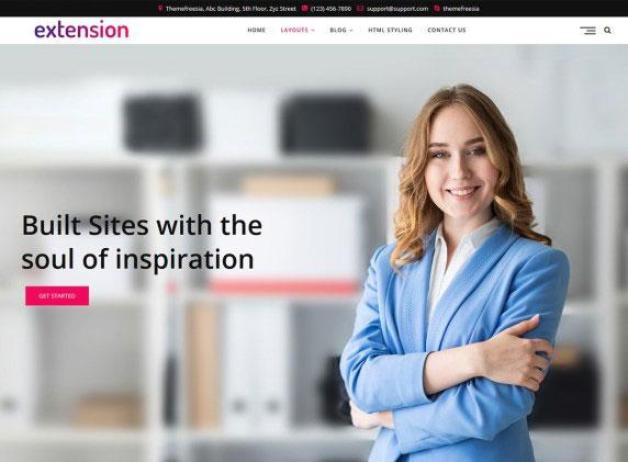 Extension Free WordPress Blog Theme