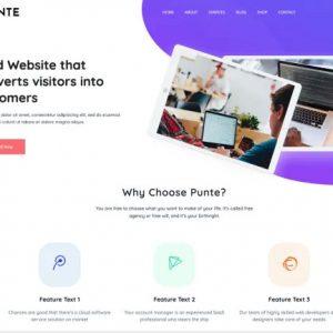 Punte Business Free WordPress Themes