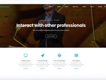 LT Social WordPress theme
