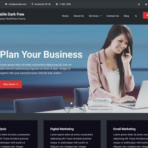 Versatile Business WordPress theme